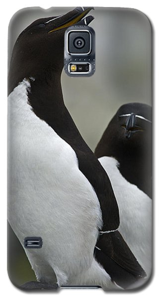 Bonded For Life... Galaxy S5 Case by Nina Stavlund