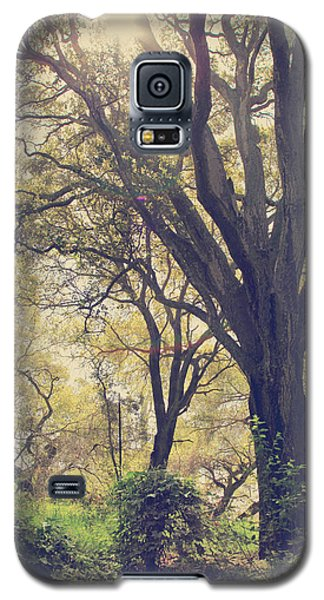 Tree Galaxy S5 Cases - Brightening Up the Day Galaxy S5 Case by Laurie Search