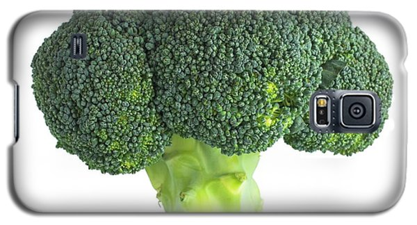 Broccoli Galaxy S5 Case by Science Photo Library