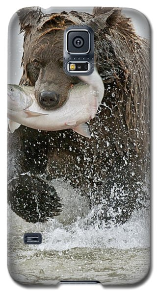 Brown Bear With Salmon Catch Galaxy S5 Case by Gary Langley