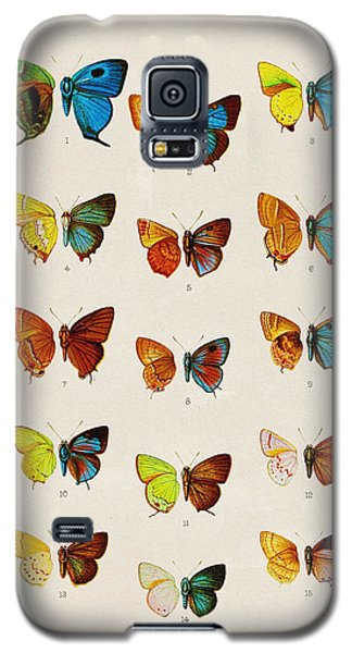 Butterfly Plate Galaxy S5 Case by Pati Photography