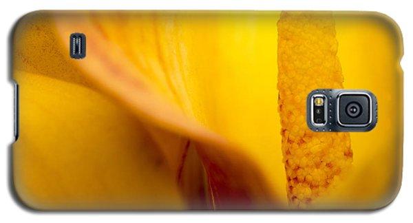 Calla Lily Galaxy S5 Case by Sebastian Musial