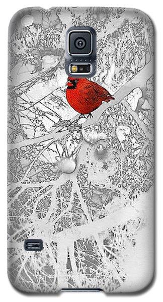 Cardinal In Winter Galaxy S5 Case by Ellen Henneke