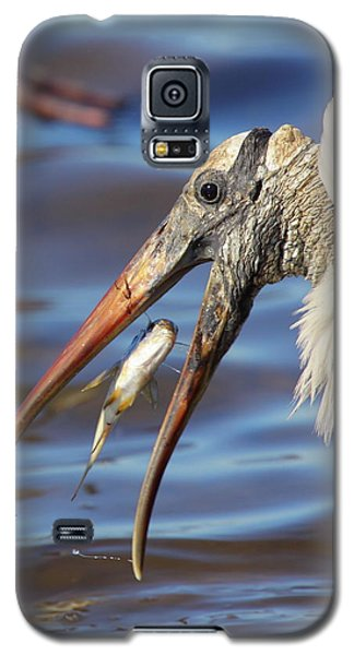 Catch Of The Day Galaxy S5 Case by Bruce J Robinson