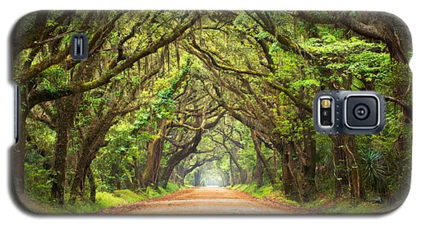 Green Galaxy S5 Cases - Charleston SC Edisto Island - Botany Bay Road Galaxy S5 Case by Dave Allen