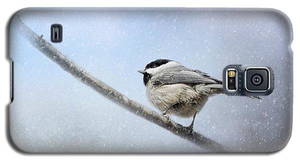 Chickadee In The Snow Galaxy S5 Case by Jai Johnson