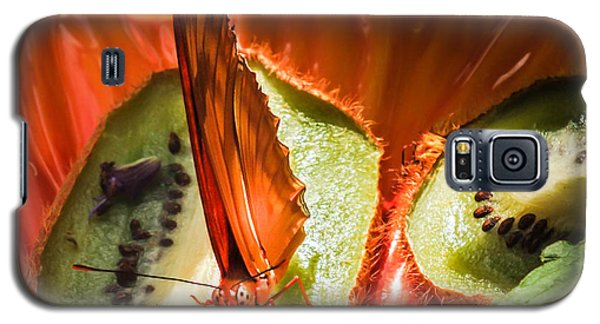 Citrus Butterfly Galaxy S5 Case by Karen Wiles