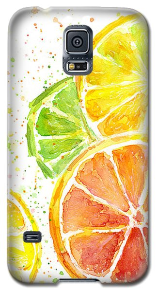 Citrus Fruit Watercolor Galaxy S5 Case by Olga Shvartsur