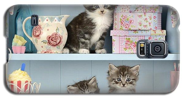 Baking Shelf Kittens Galaxy S5 Case by Greg Cuddiford