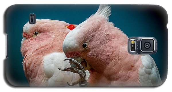 Cockatoos Galaxy S5 Case by Ernie Echols