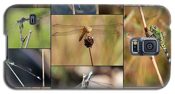 Collage Marsh Life Galaxy S5 Case by Carol Groenen