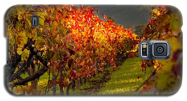 Color On The Vine Galaxy S5 Case by Bill Gallagher