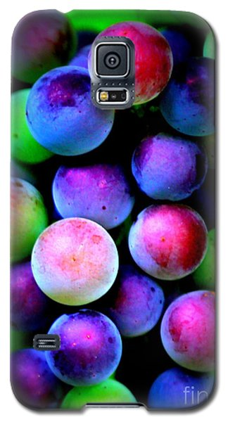 Colorful Grapes - Digital Art Galaxy S5 Case by Carol Groenen