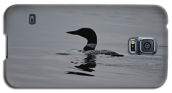 Common Loon Galaxy S5 Case by James Petersen