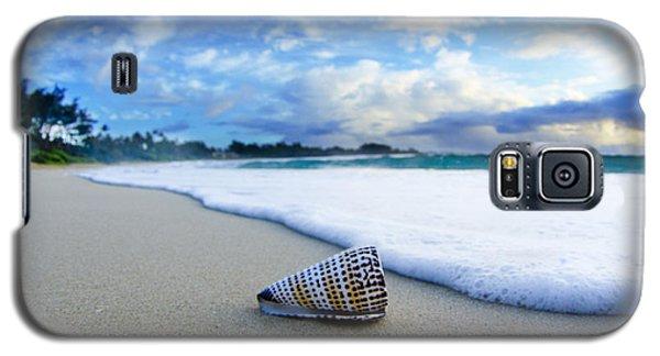 Seascape Galaxy S5 Cases - Cone Foam Galaxy S5 Case by Sean Davey