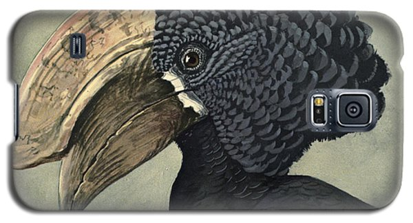 Crested Hornbill Galaxy S5 Case by Louis Agassiz Fuertes