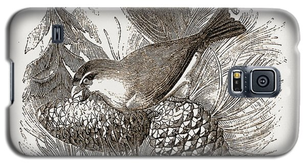 Crossbills Galaxy S5 Case by Litz Collection