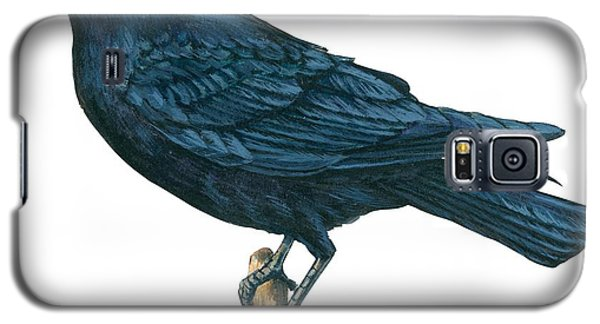 Crow Galaxy S5 Case by Anonymous