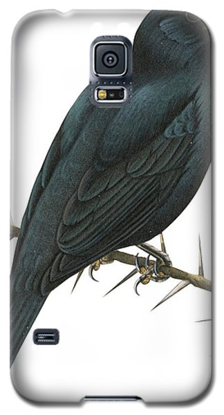 Cuckoo Shrike Galaxy S5 Case by Anonymous