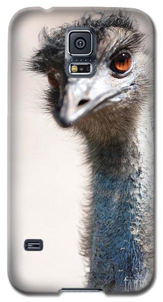Curious Emu Galaxy S5 Case by Carol Groenen