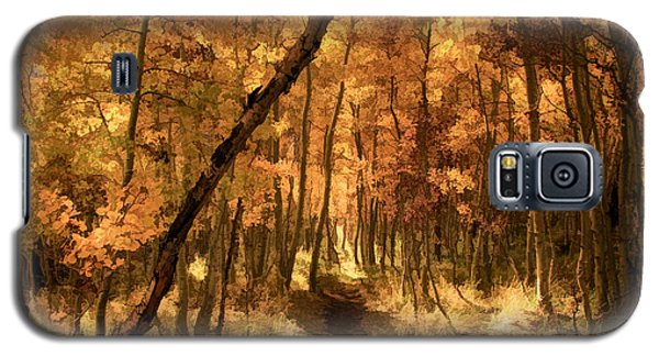 Popular Galaxy S5 Cases - Down the Golden Path Galaxy S5 Case by Donna Kennedy