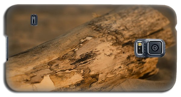 Tree Galaxy S5 Cases - Driftwood Galaxy S5 Case by Sebastian Musial
