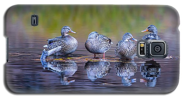 Ducks In A Row Galaxy S5 Case by Larry Marshall