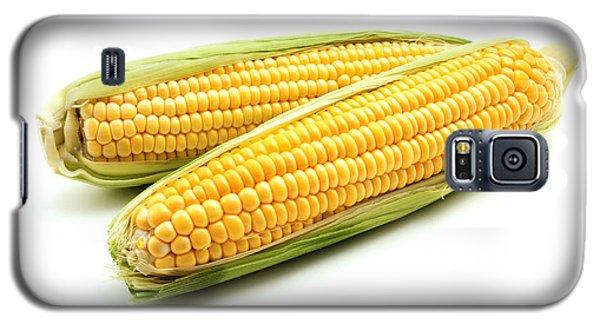 Ears Of Maize Galaxy S5 Case by Fabrizio Troiani
