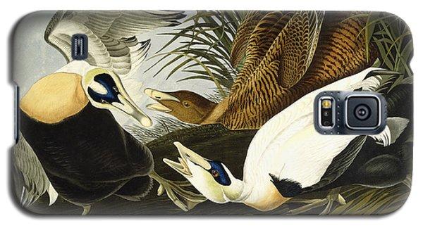 Eider Ducks Galaxy S5 Case by John James Audubon