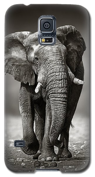 Elephant Approach From The Front Galaxy S5 Case by Johan Swanepoel
