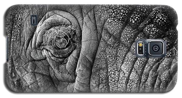 Elephant Eye Galaxy S5 Case by Sebastian Musial
