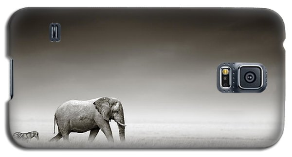 Elephant With Zebra Galaxy S5 Case by Johan Swanepoel