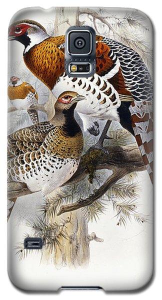 Elliot's Pheasant Galaxy S5 Case by Joseph Wolf