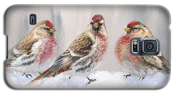 Snowy Birds - Eyeing The Feeder 2 Alaskan Redpolls In Winter Scene Galaxy S5 Case by Karen Whitworth
