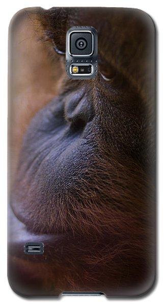 Eyes Galaxy S5 Case by Shane Holsclaw