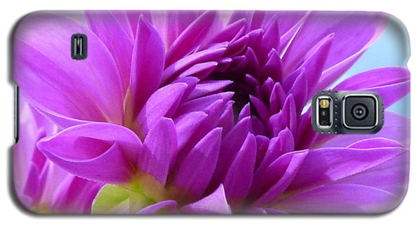 Flowers Galaxy S5 Cases - FairyTale Galaxy S5 Case by Connie Handscomb