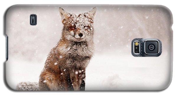 Red Galaxy S5 Cases - Fairytale Fox _ Red Fox in a Snow Storm Galaxy S5 Case by Roeselien Raimond