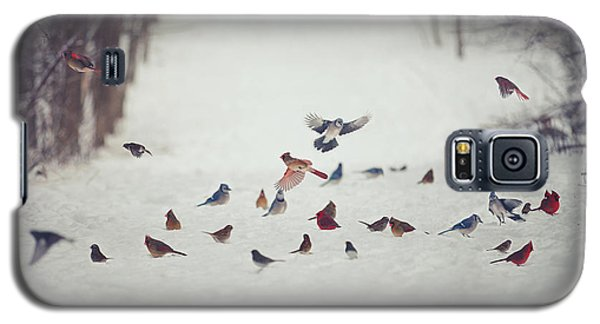 Bird Galaxy S5 Cases - Feathered Friends Galaxy S5 Case by Carrie Ann Grippo-Pike