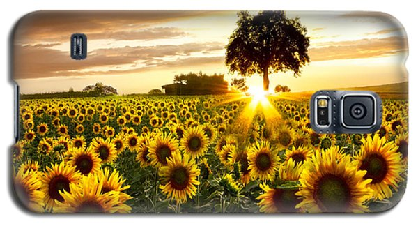 Buy Galaxy S5 Cases - Fields of Gold Galaxy S5 Case by Debra and Dave Vanderlaan