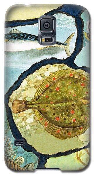 Fish Galaxy S5 Case by English School