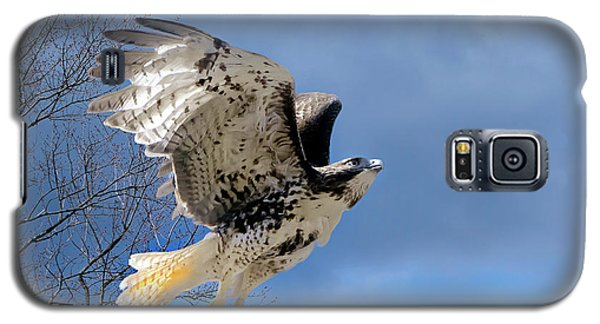 Flight Of The Red Tail Galaxy S5 Case by Bill Wakeley