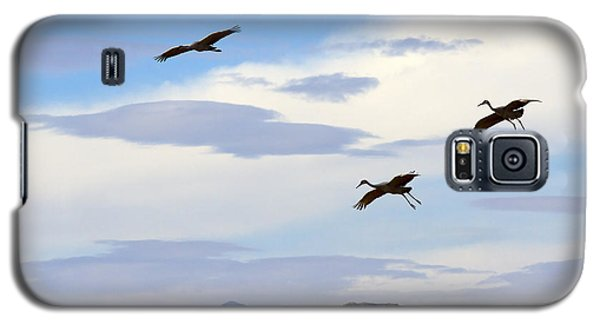 Flight Of The Sandhill Cranes Galaxy S5 Case by Mike  Dawson