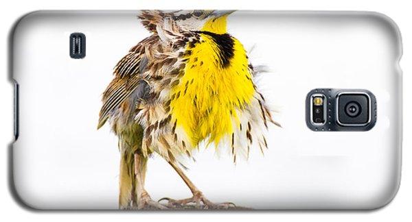 Flluffy Meadowlark Galaxy S5 Case by Bill Swindaman