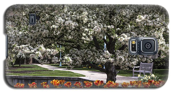Flowers And Bench At Michigan State University  Galaxy S5 Case by John McGraw