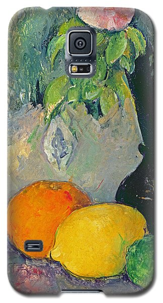 Flowers And Fruits Galaxy S5 Case by Paul Cezanne