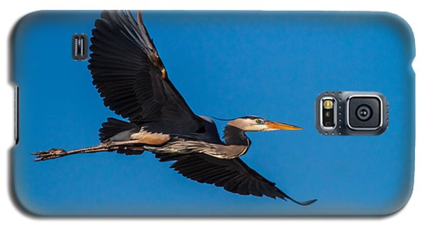 Blue Galaxy S5 Cases - Flying Great Blue Heron Galaxy S5 Case by Andres Leon