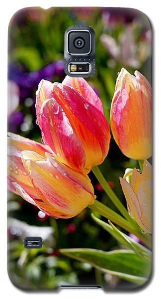 Fresh Tulips Galaxy S5 Case by Rona Black