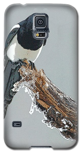 Frosted Magpie- Abstract Galaxy S5 Case by Tim Grams