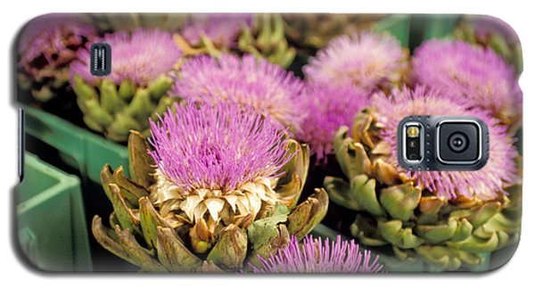 Germany Aachen Munsterplatz Artichoke Flowers Galaxy S5 Case by Anonymous