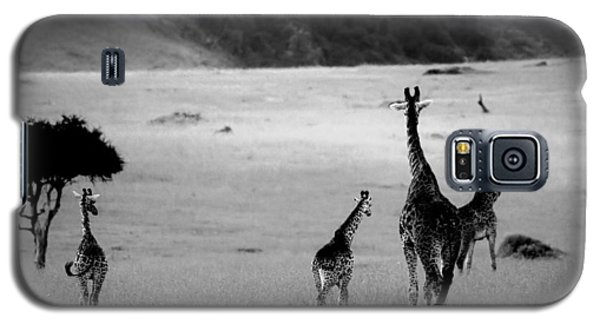 Giraffe In Black And White Galaxy S5 Case by Sebastian Musial